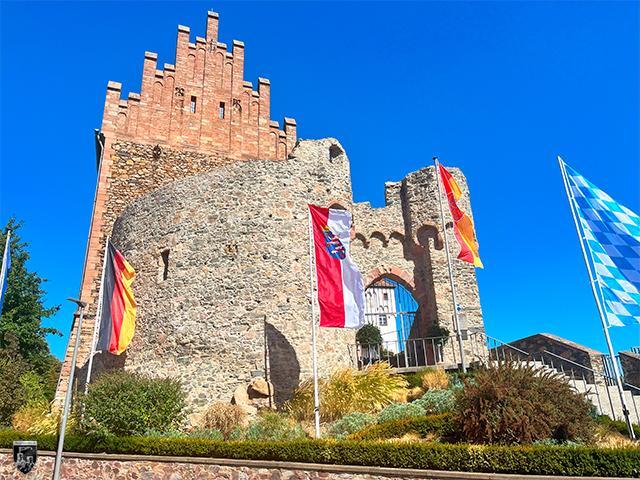 Burg Alzenau in Bayern