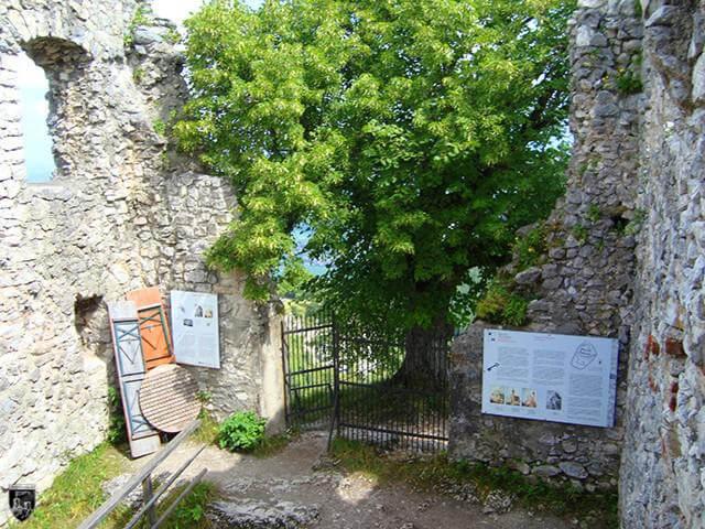 Burg Falkenstein, Pfronten