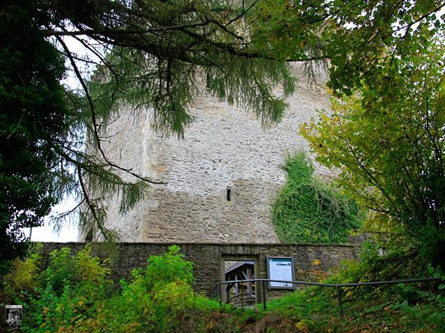 Burg Neunussberg
