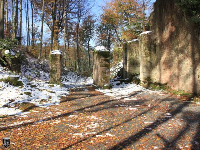 Burg Wildenberg, Wildenburg