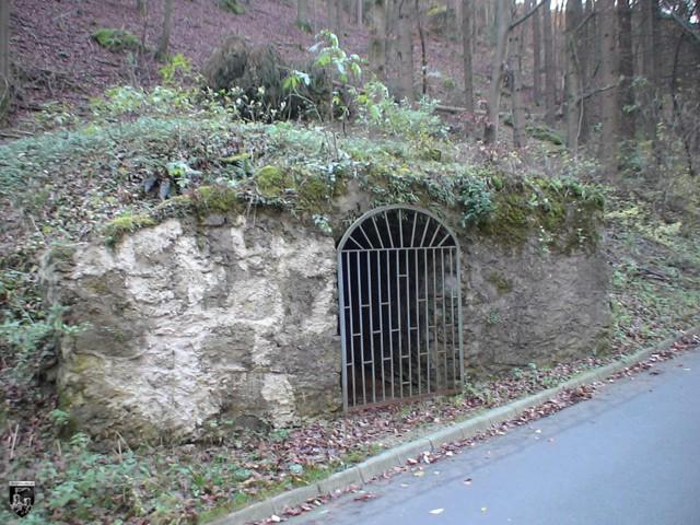 Burg Wolfsberg
