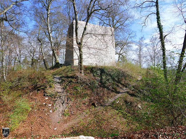 Burg Aach, Alter Turm Aach in Baden-Württemberg