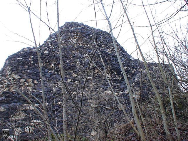 Burg Alt Ehrenfels