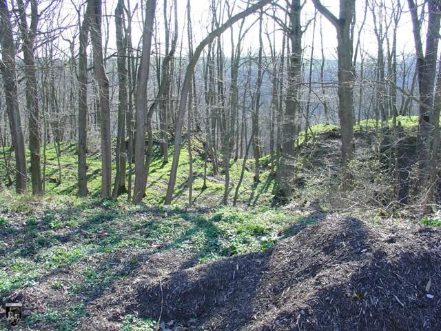 Burg Altenberg