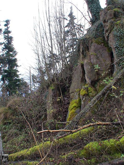 Burg Alt-Geroldseck, Rauhkasten