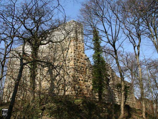 Burg Blankenhorn in Baden-Württemberg