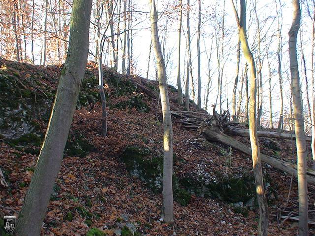 Burg Bühringen