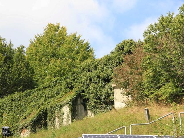 Burg Buttenhausen