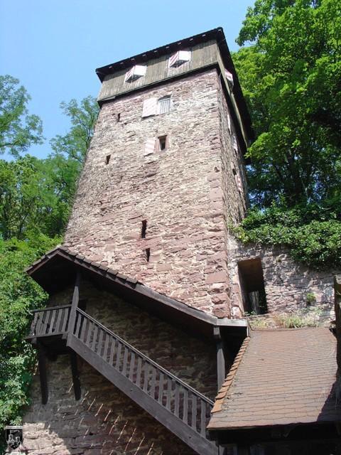 Burg Dauchstein