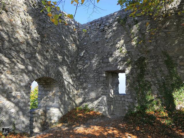 Burg Diepoldsburg, Rauber