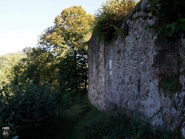 Burg Diersburg