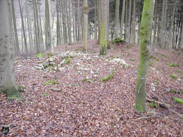 Burg Gechingen