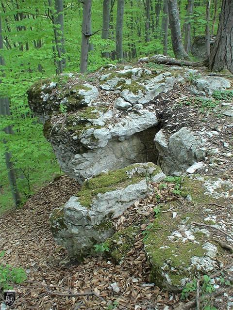 Burg Genkingen