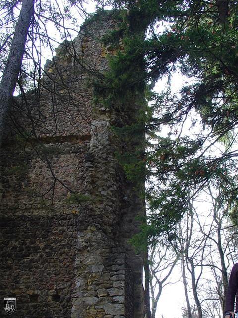 Burg Granegg, Graneck, Michelstein
