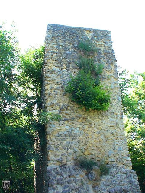 Burg Güssenburg