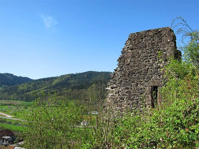 Burg Hausach, Husen