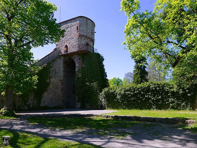 Burg Hohennagold in Baden-Württemberg