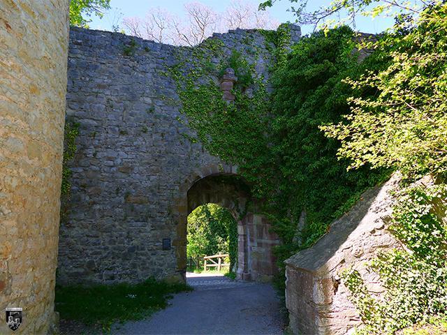Burg Hohennagold