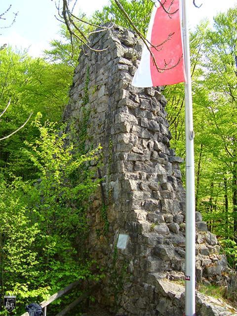 Burg Hohenrode, Brigittenschloss