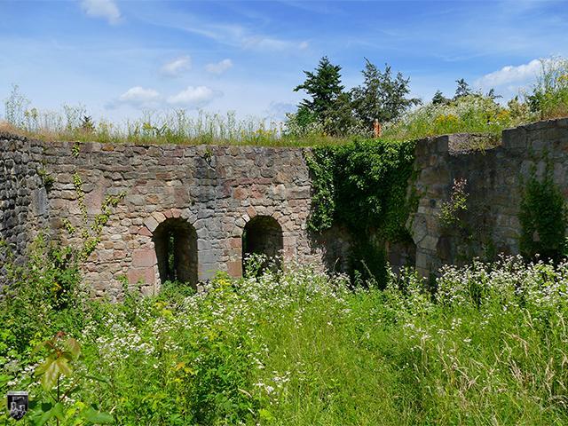 Burg Kirnburg
