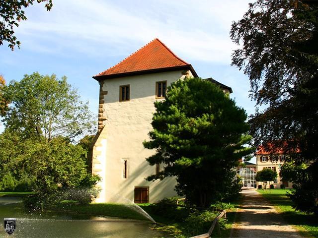 Burg Altes Schloss, Neues Schloss, Neckarbischofsheim