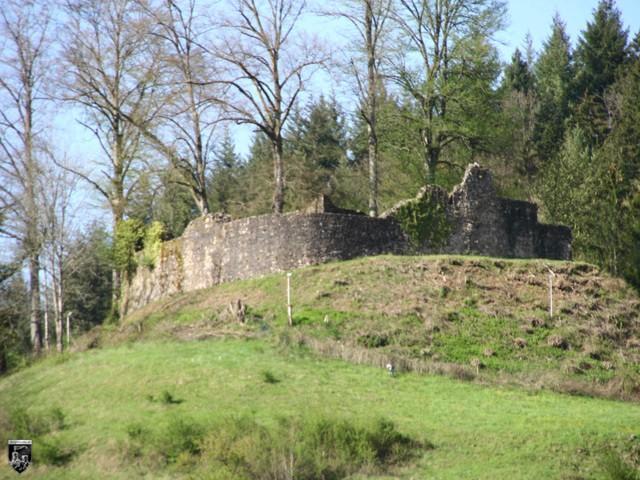 Burg Oberwolfach in Baden-Württemberg