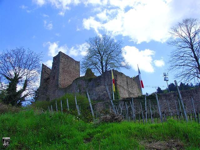 schauenburg oberkirch grundriss