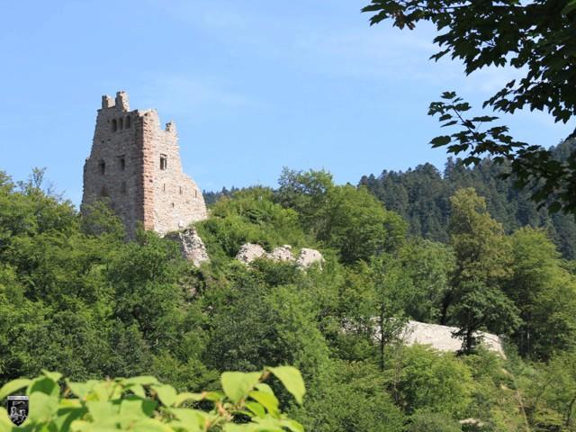 Burg Schenkenburg, Schenkenzell in Baden-Württemberg
