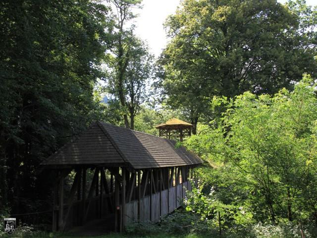 Burg Schiltach in Baden-Württemberg