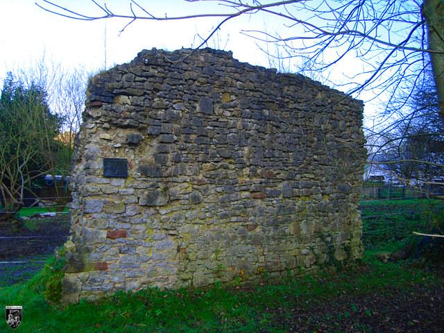 Burg Schmalenstein in Baden-Württemberg