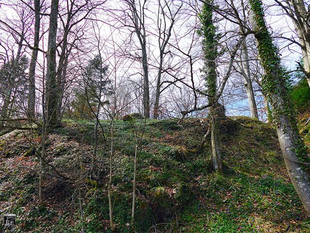 Burg Schwarzenburg, Schwarzenberg