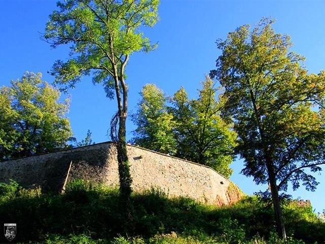 Burg Staufenburg