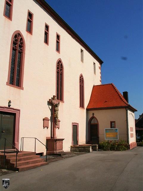 Burg Tempelhaus, Neckarelz, Elz