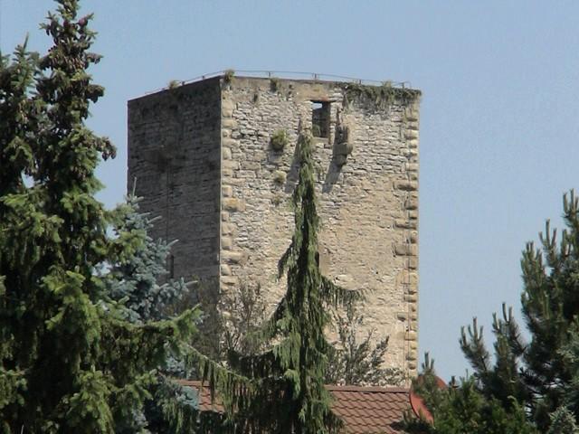 Burg Unterriexingen in Baden-Württemberg
