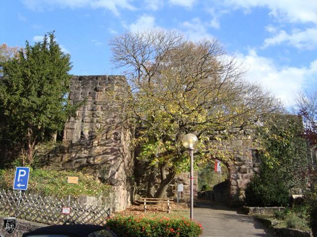 Burg Wildberg in Baden-Württemberg