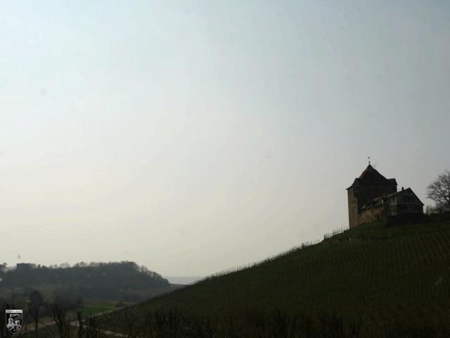 Burg Wildeck
