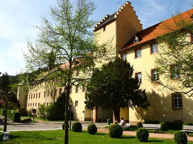 Burg Wolfach, Fürstenberg in Baden-Württemberg