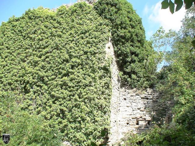 Burg Zuzenhausen