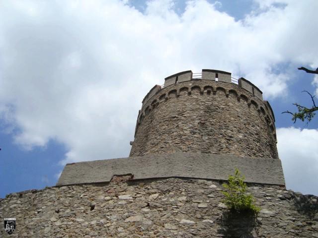 Alsbacher Schloss, Burg Bickenbach in Hessen