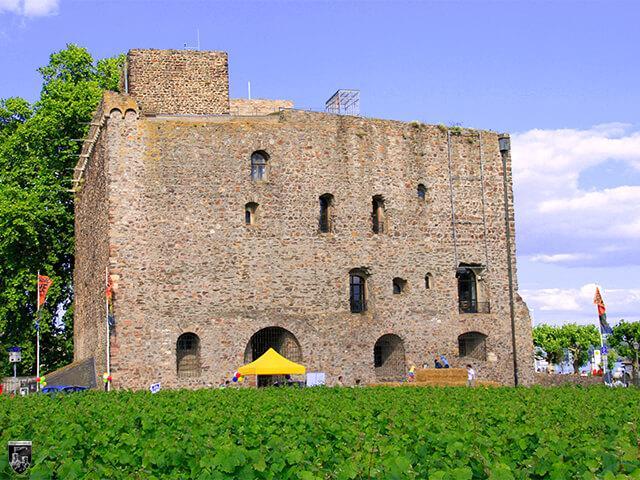Burg Brömserburg in Hessen