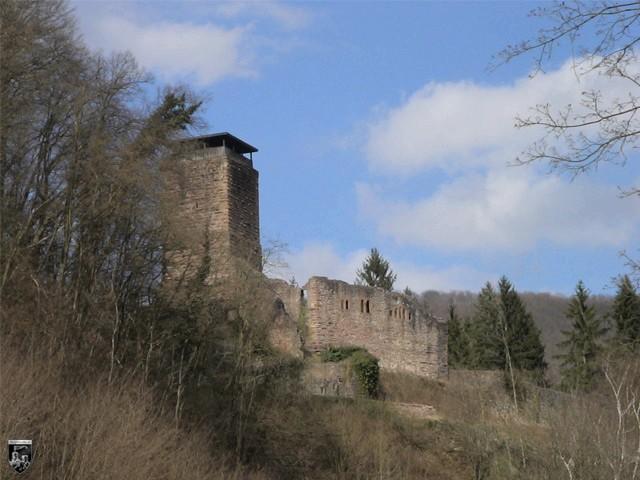 Burg Neckarsteinach, Hinterburg in Hessen
