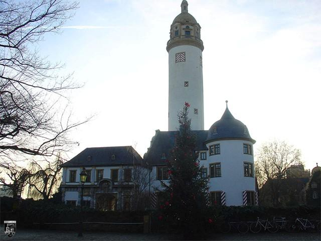 Burg Höchst in Hessen