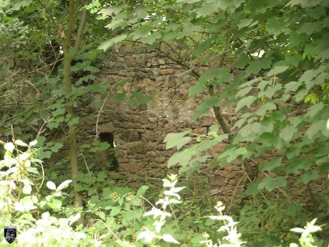 Burg Mühlhausen, Mühlhäuser Schloss