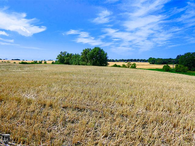 Burg Ilow, Ilenburg