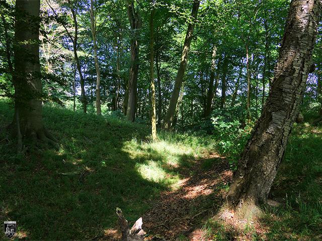 Burg Schulenberg