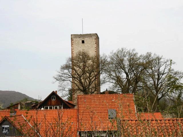 Burg Greene in Niedersachsen
