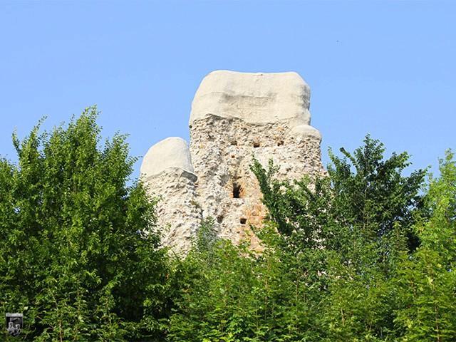 Burg Osterode, Alte Burg