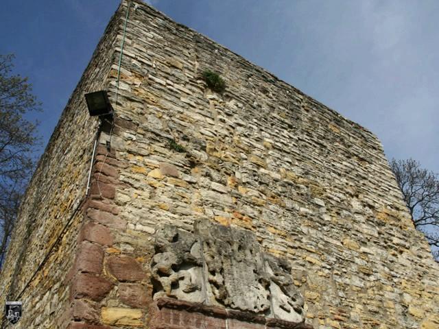 Burg Salzderhelden, Heldenburg