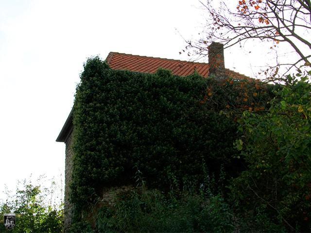 Burg Wittmar
