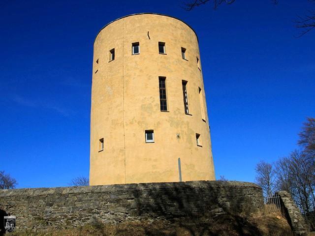 Burg Ginsburg